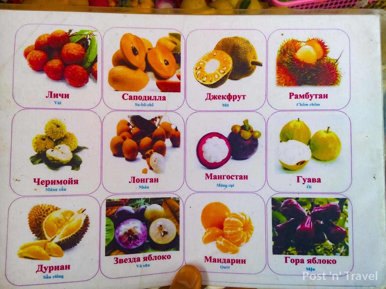 щита, название экзотических фруктов с картинками просто сложных